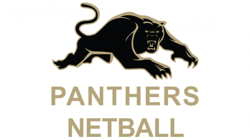 Team-Panthers Netball